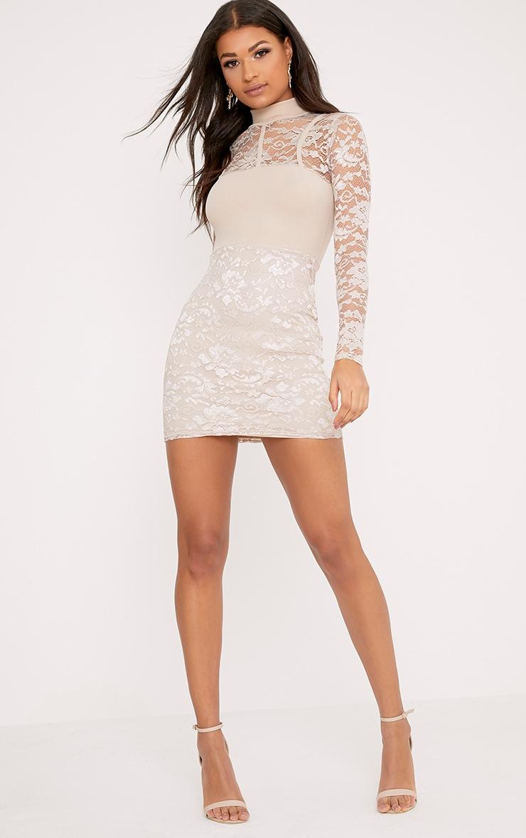 Emelia Nude High Neck Lace Bodycon Dress 4