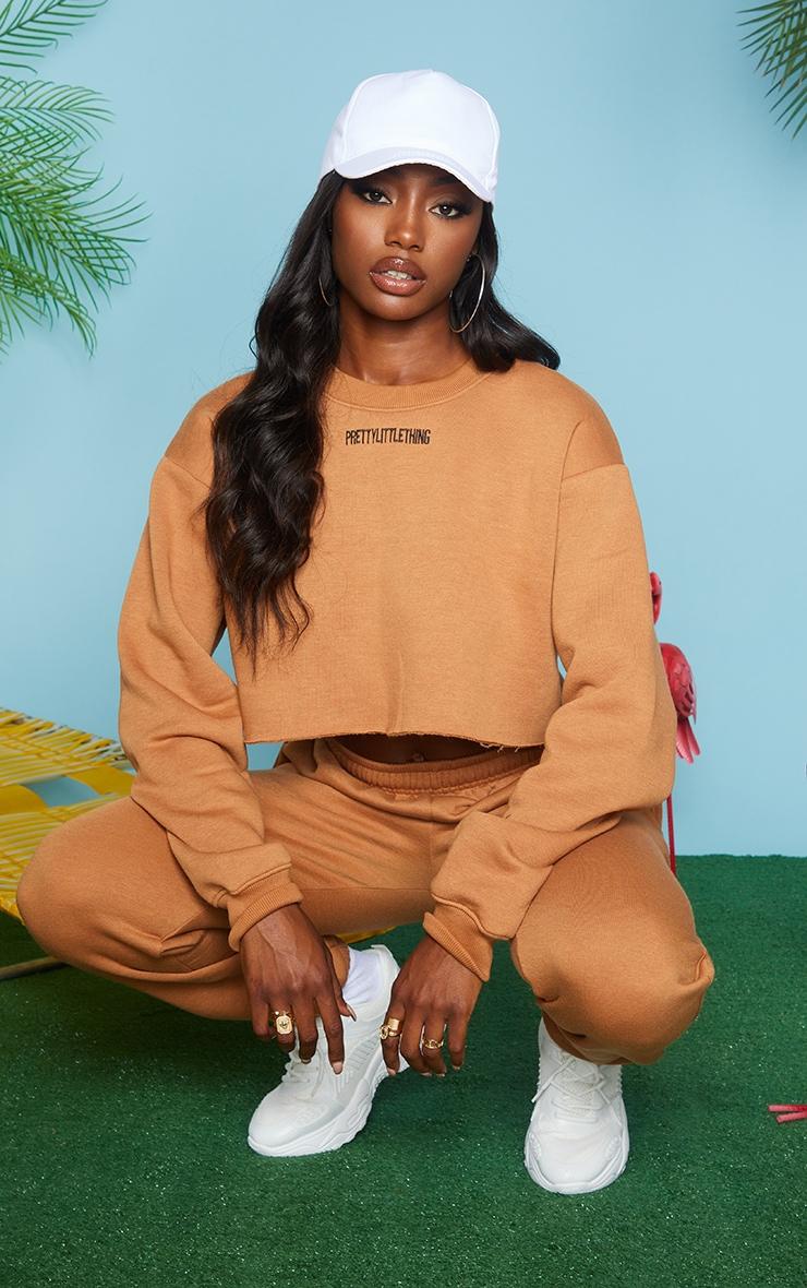 PRETTYLITTLETHING Camel Embroidered Crop Sweatshirt 1