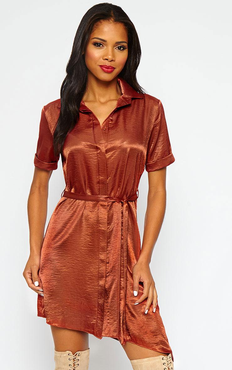 Leigha Rust Silky Shirt Dress 2