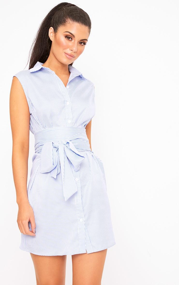 Blue Sleeveless Pinstripe Tie Waist Shirt Dress 2