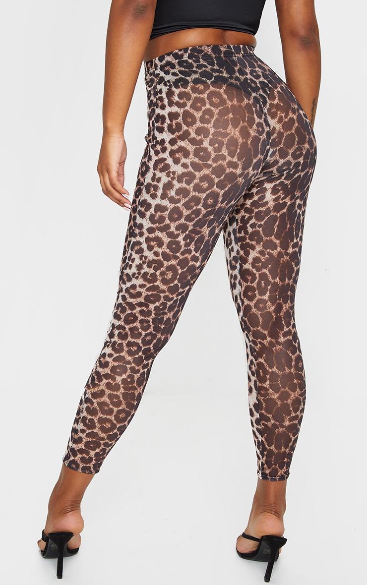 Leopard Mesh Leggings 3