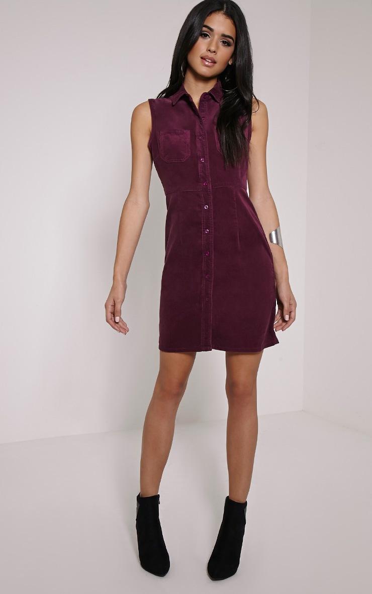 Ritta Plum Button Front Cord Dress 3