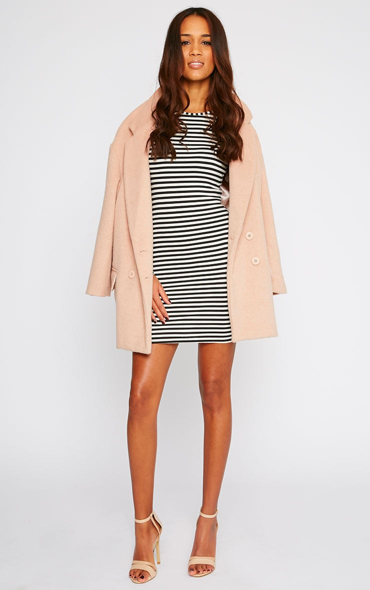 Carolina Monochrome Stripe Long Sleeve Jersey Mini Dress 5