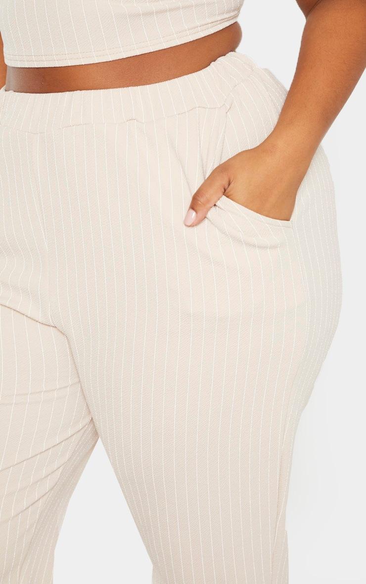 PLT Plus - Pantalon droit gris pierre à fines rayures 5