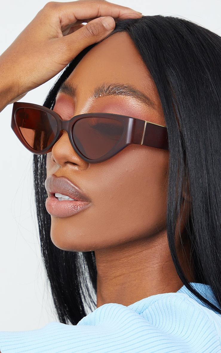 Brown Flat Cat Eye Sunglasses 1