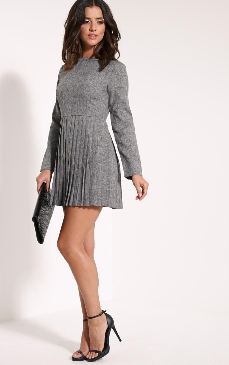 Kay Grey Pleated Long Sleeved Mini Dress 4