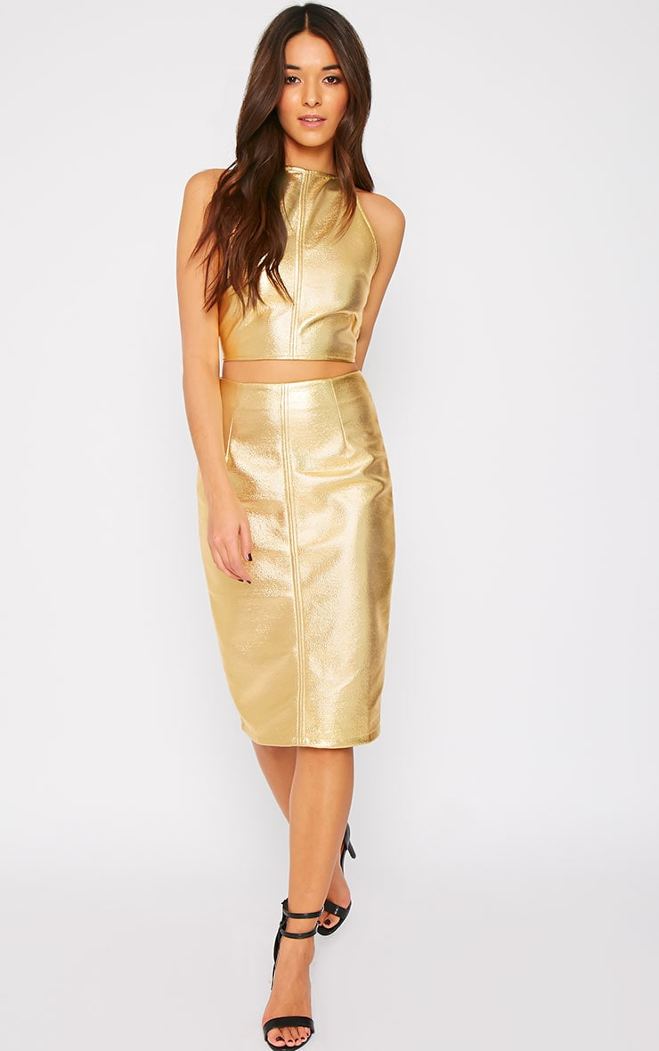 Catalina Gold Coated Midi Skirt 3
