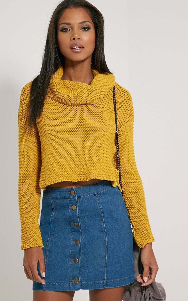 Resi Mustard Roll Neck Long Sleeve Crop Jumper 1