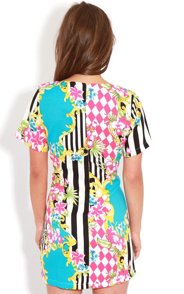 Annabella Floral Stripe Shift Dress 2