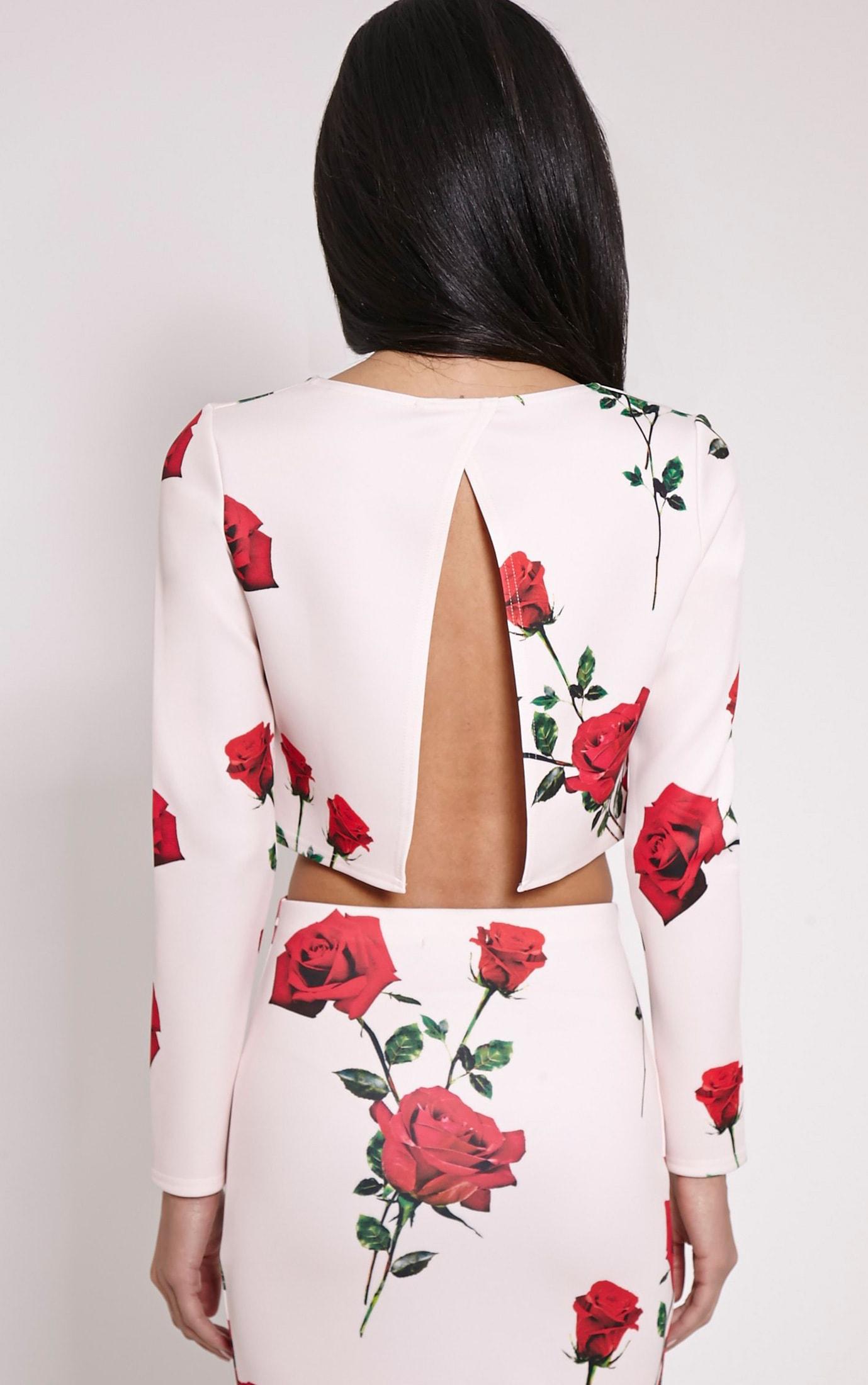 Fawna Nude Rose Print Crop Top 2