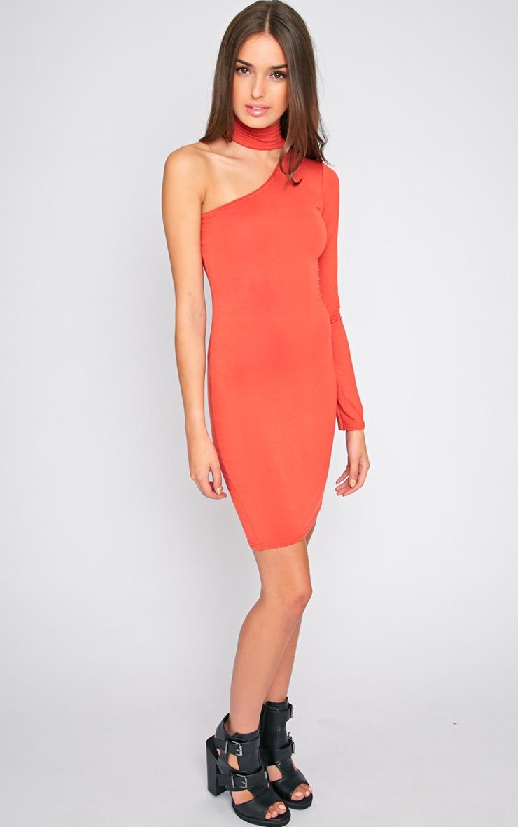 Eileen Orange One Shoulder Dress 3