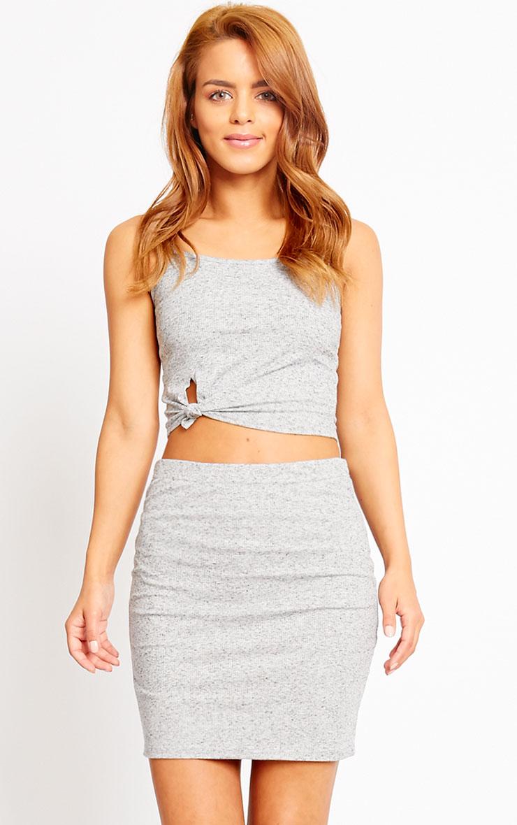 Honey Grey Ribbed Mini Skirt 1