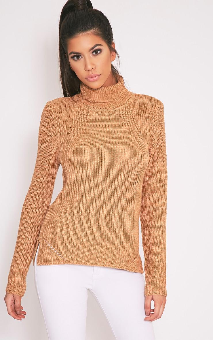 Soraya pull tricoté à col roulé brun 1