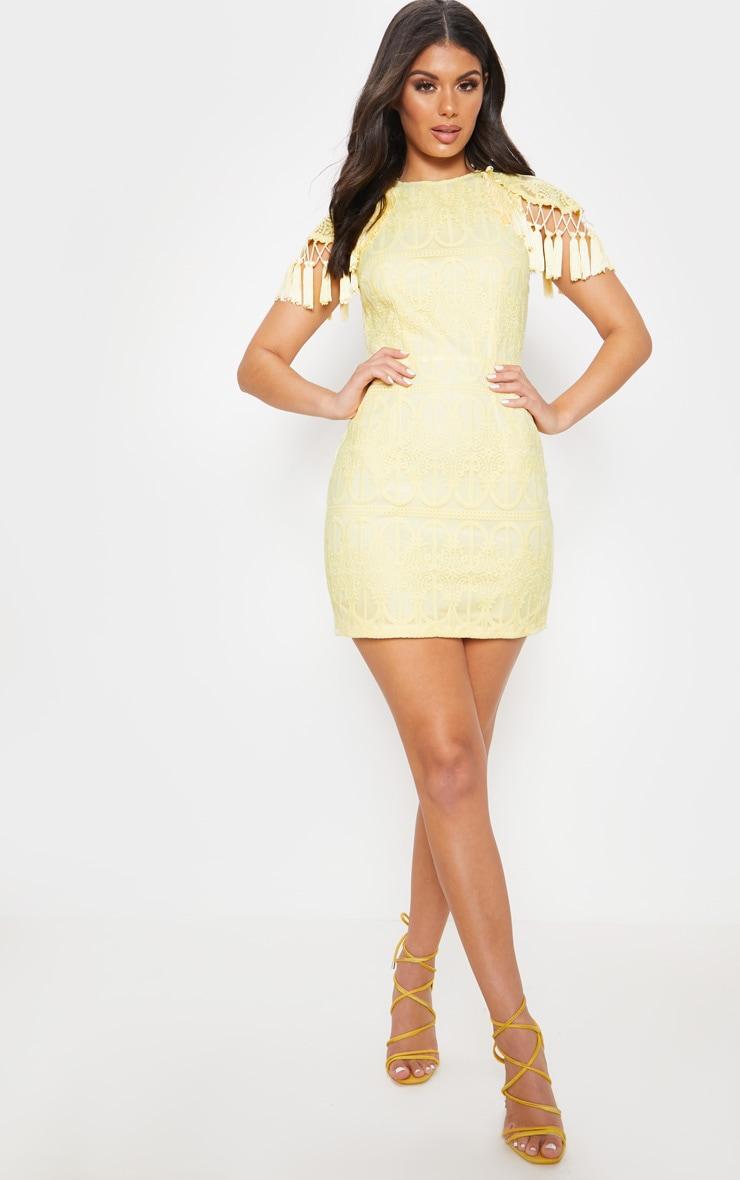 Lemon Lace Tassel Cape Detail Bodycon Dress 1