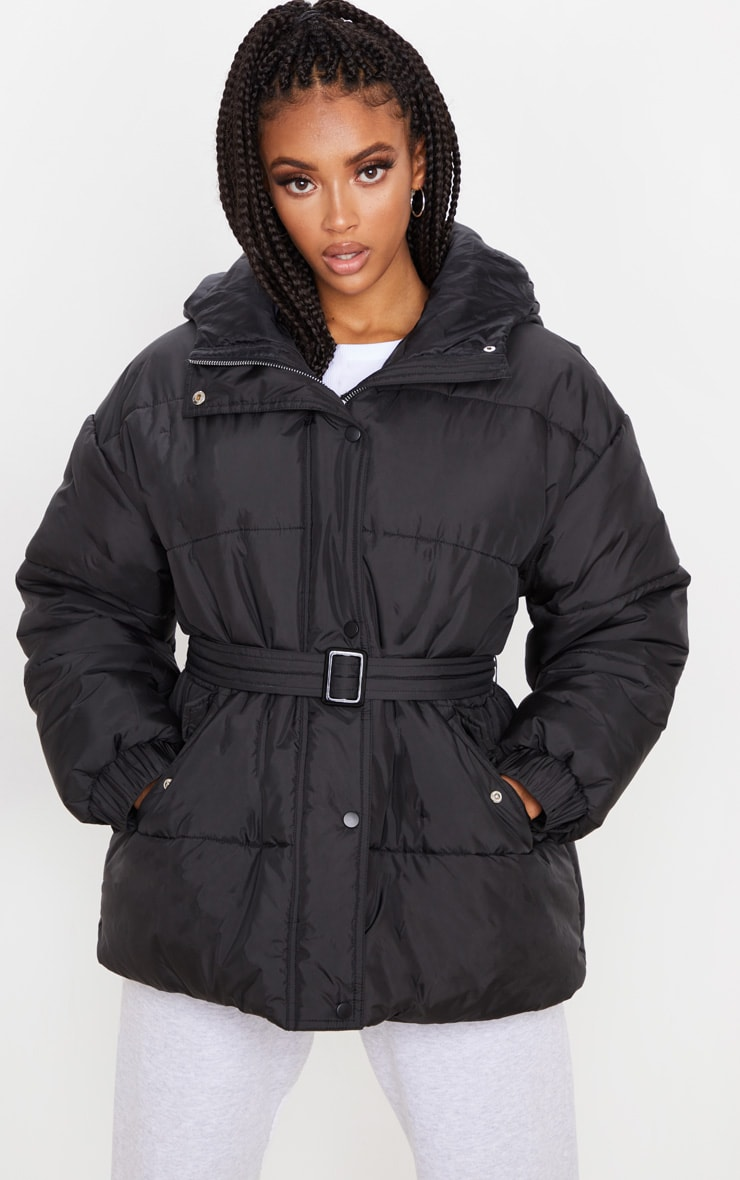 Black Belted Puffer 2