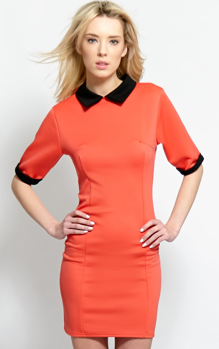 Katrina Coral Collar Dress 1