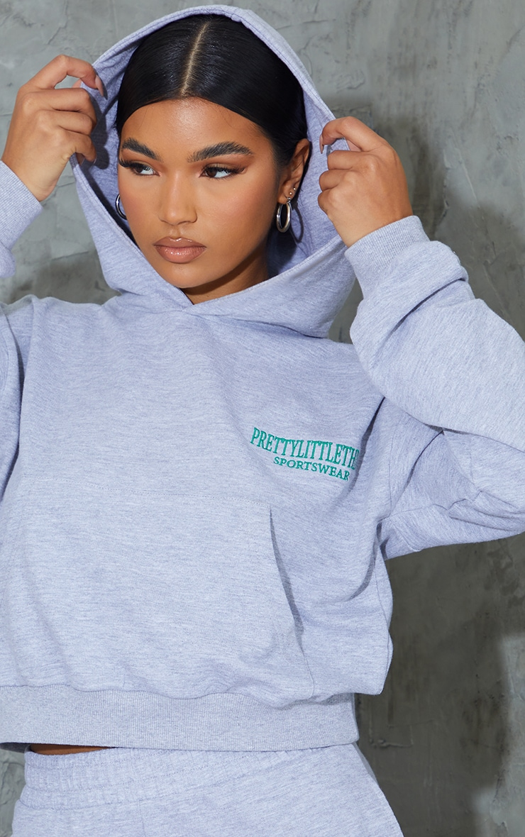Grey Sports Embroidered Cropped Hoodie 4