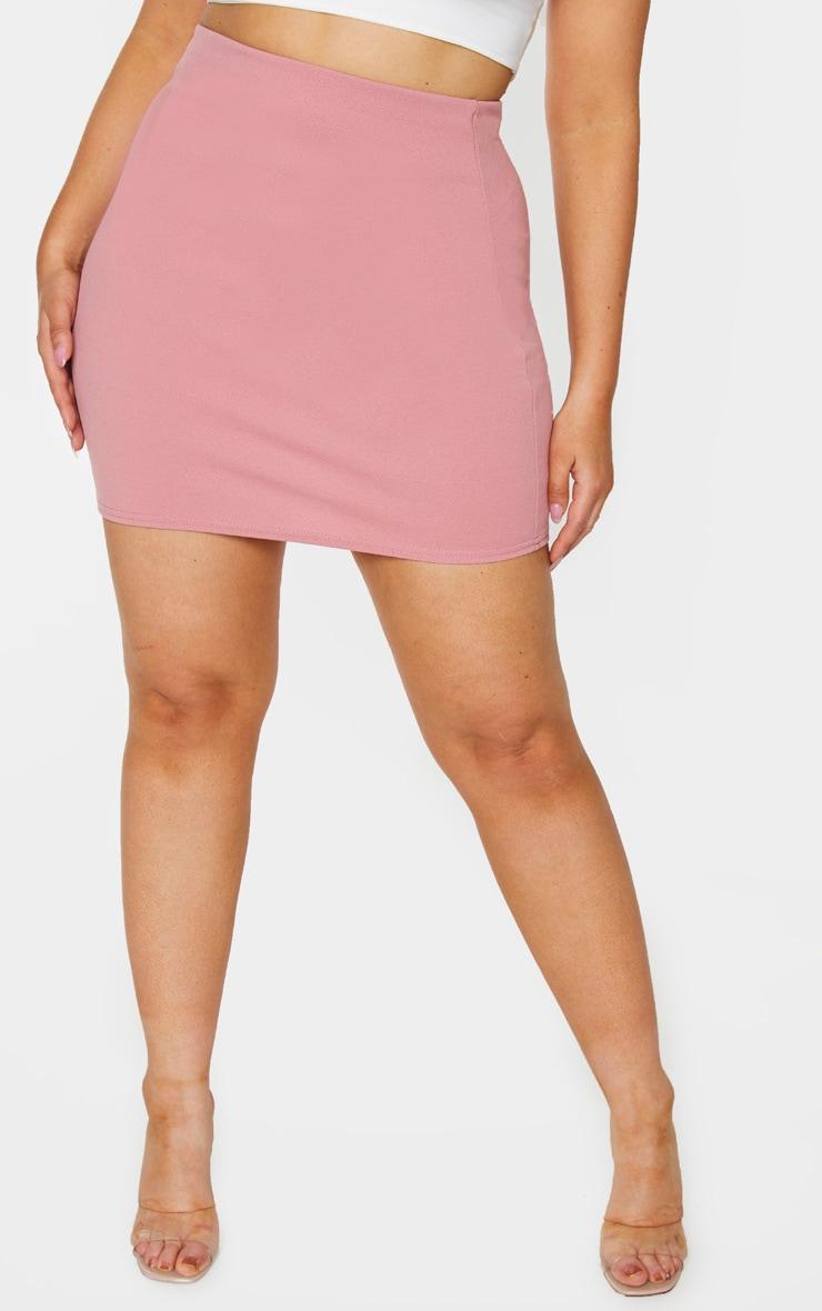 Plus Pink Mini Skirt 2