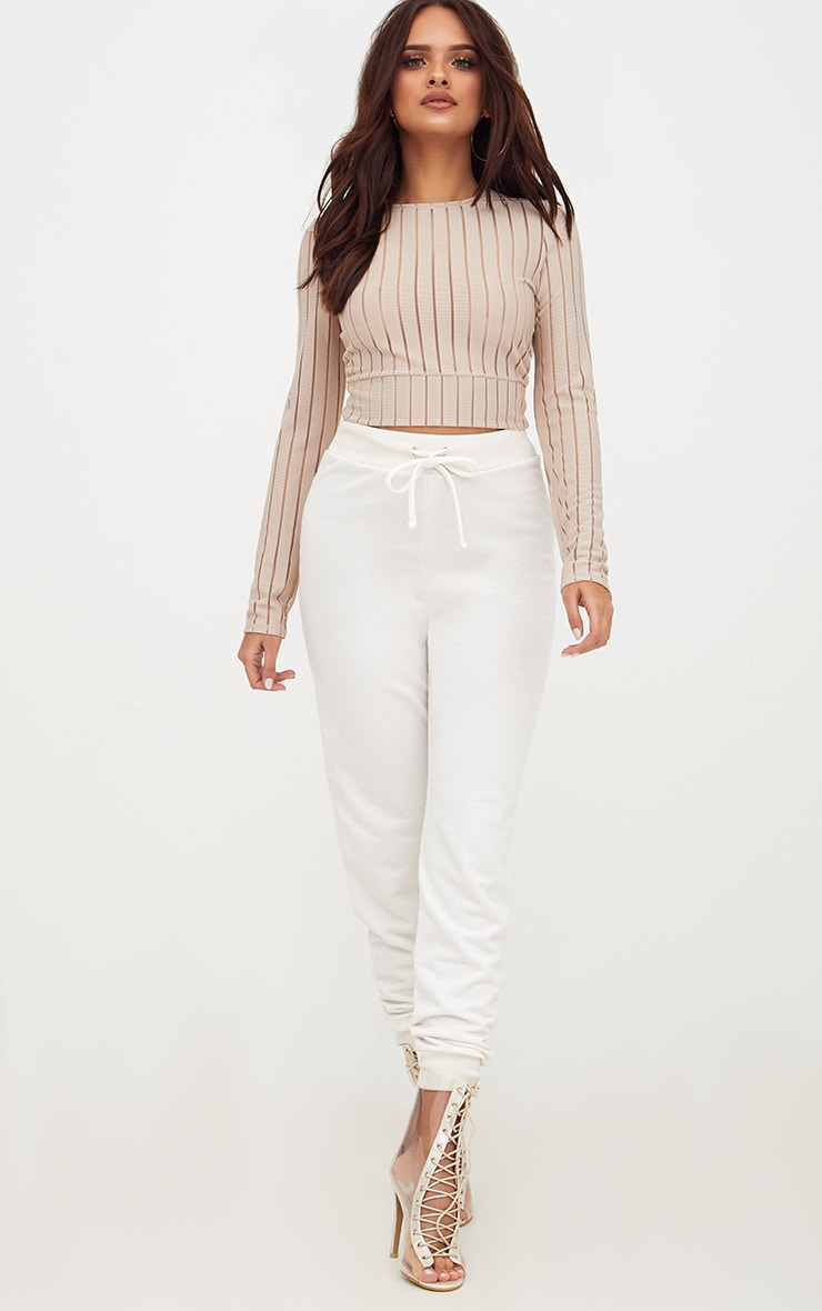 Stone Mesh Stripe Longlseeve Crop Top 4
