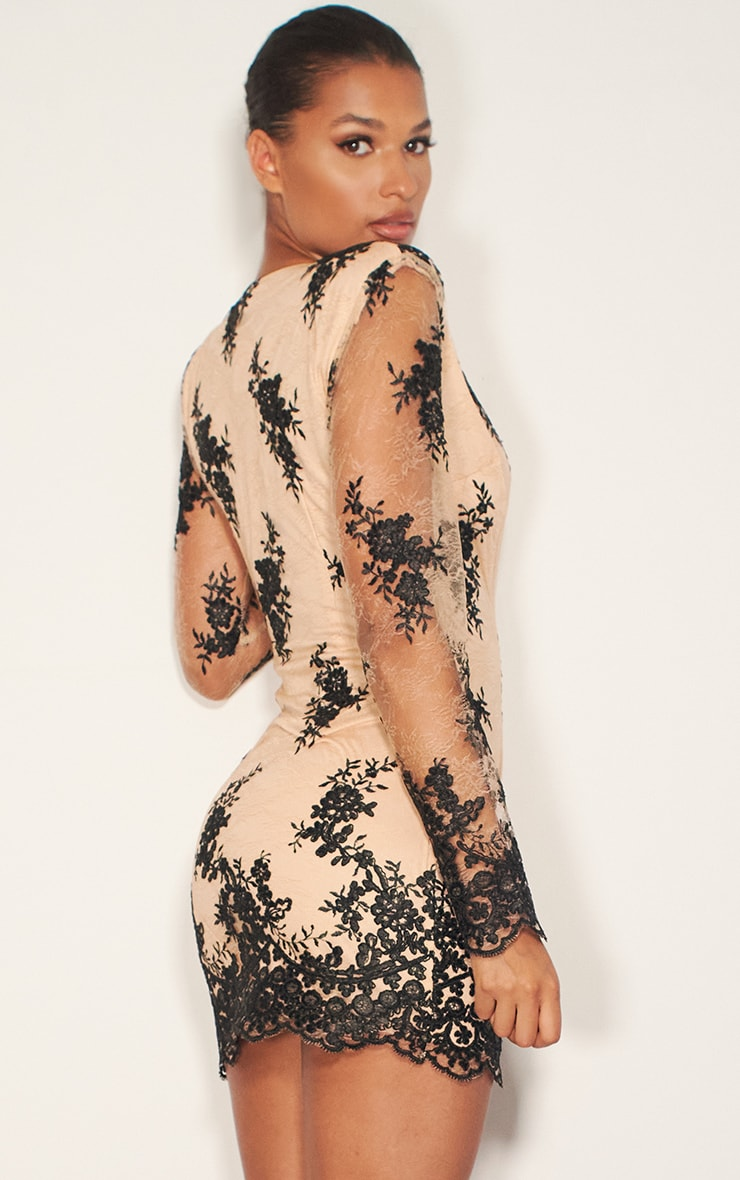 Nude Embroidered Lace Long Sleeve Plunge Bodycon Dress 2