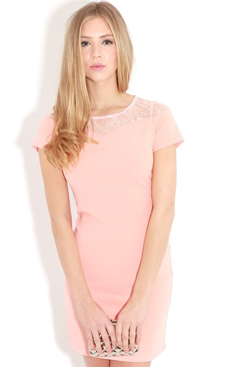 Chrisy Coral Fitted Lace Panel Dress 4