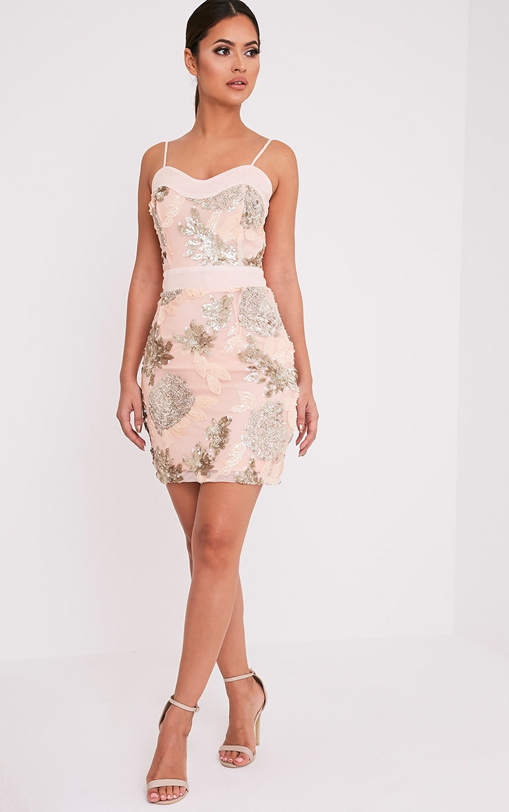 Libbie Nude Floral Sequin Bodycon Dress 5