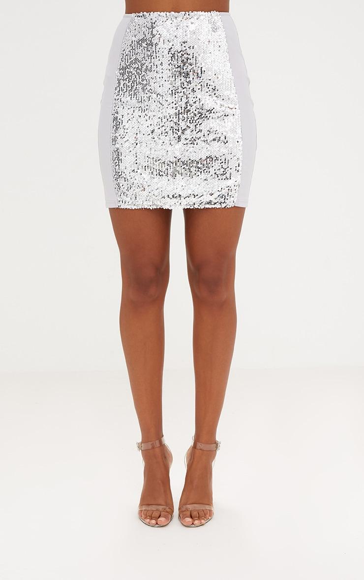 Grey Sequin Panel Skirt 2