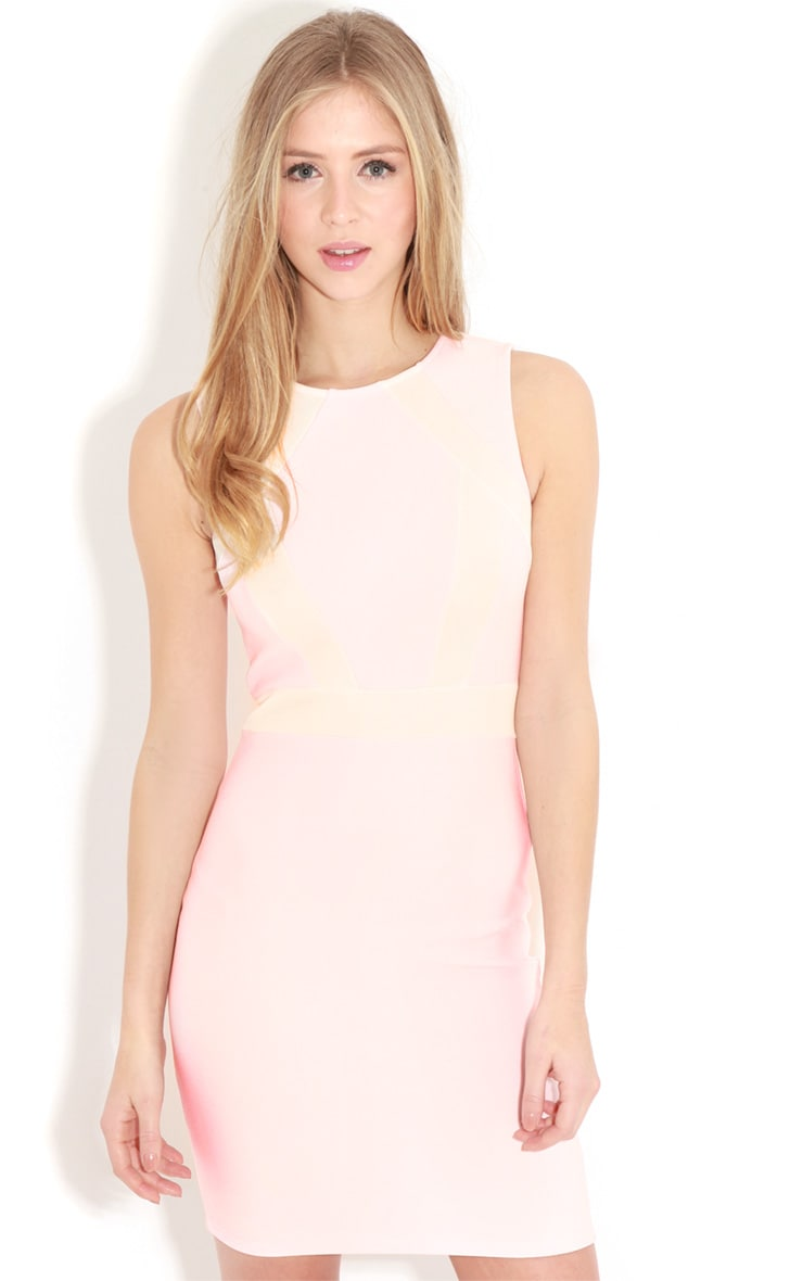 Jessy Pink Bodycon Dress  1