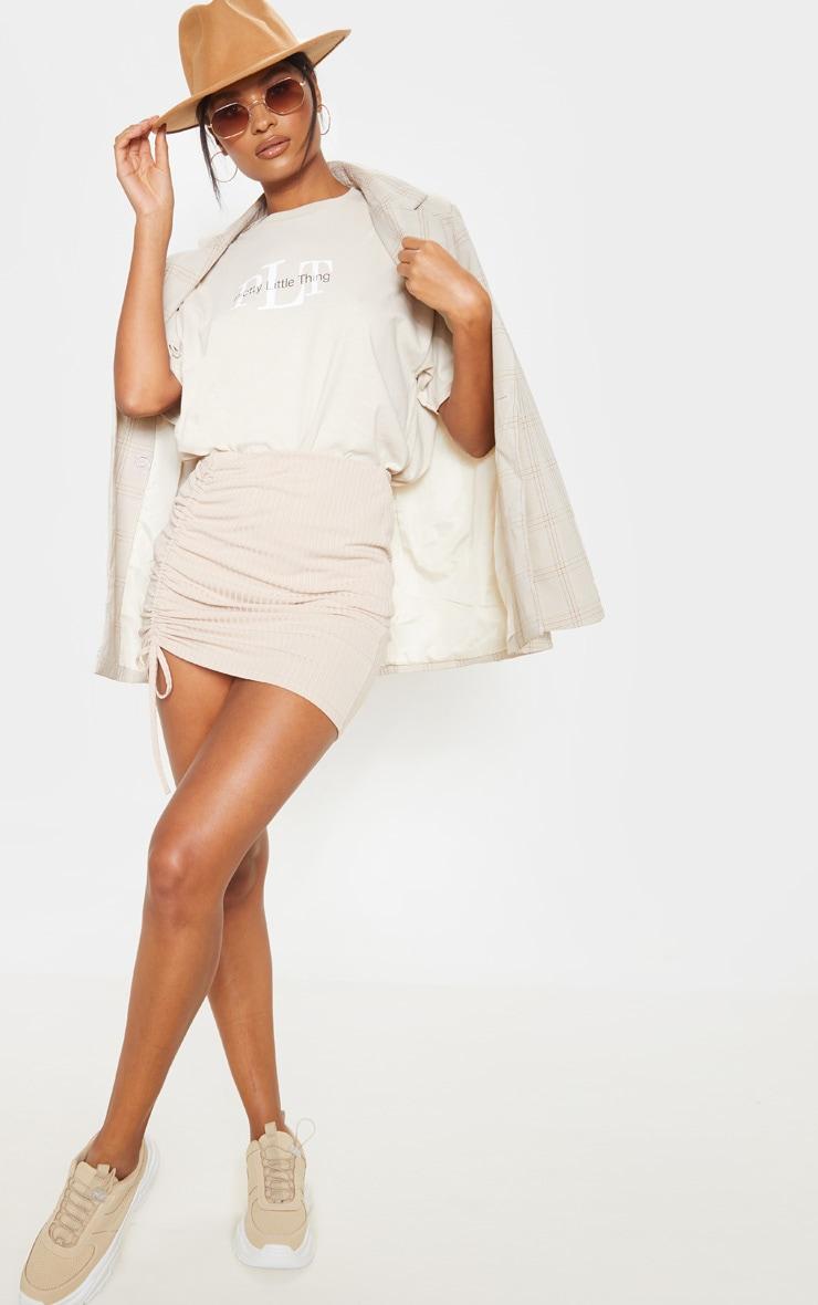 Stone Rib Ruched Detail Mini Skirt 5