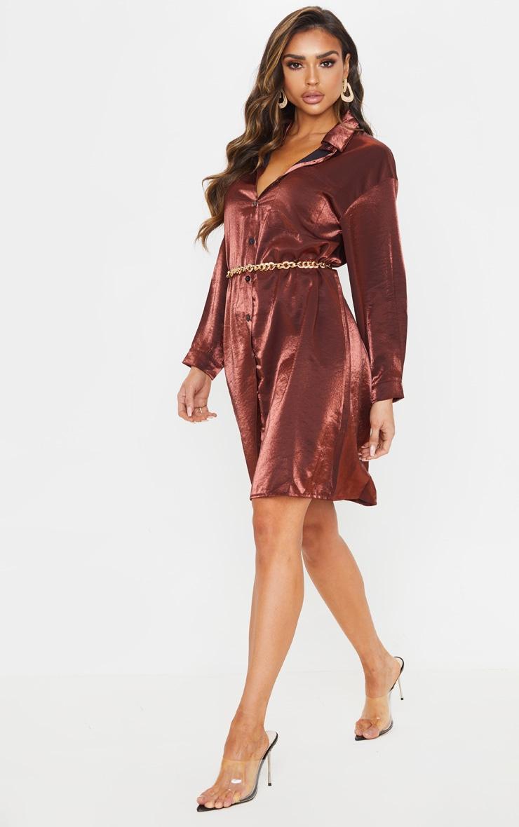 Bronze Metallic Shirt Dress 1