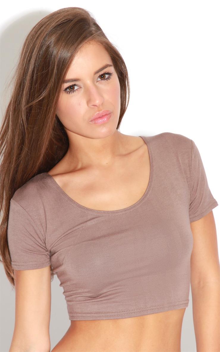 Caitlin Beige Crop T-Shirt 1