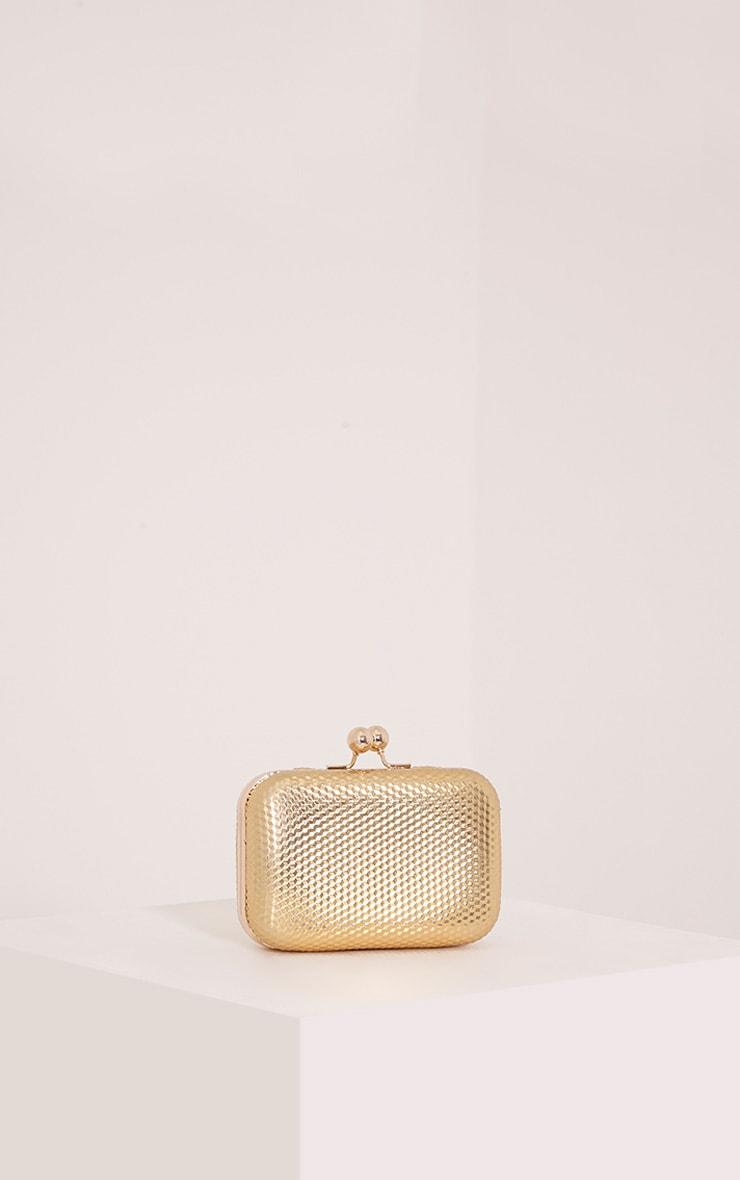 Morgan Gold Box Clutch Bag 1