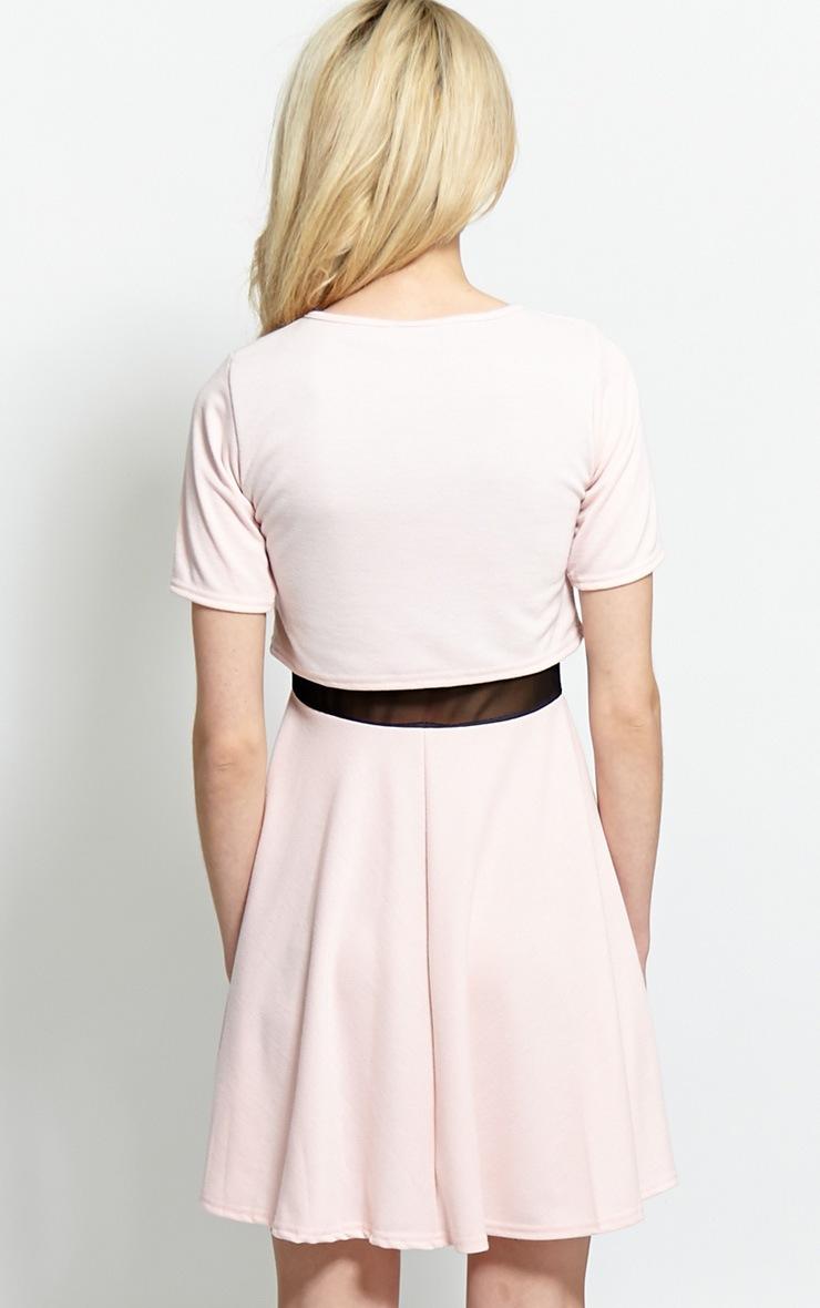Suzie Pink Mesh Skater Dress 2