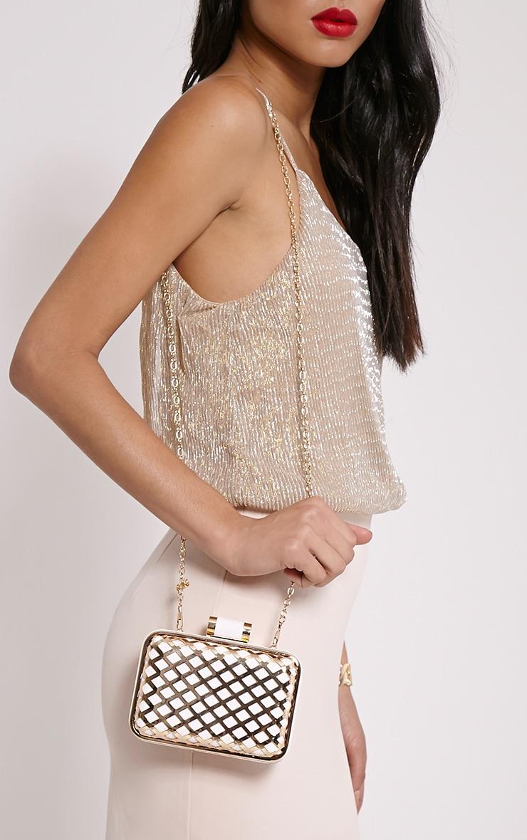 Kristina White Caged Clutch Bag 2
