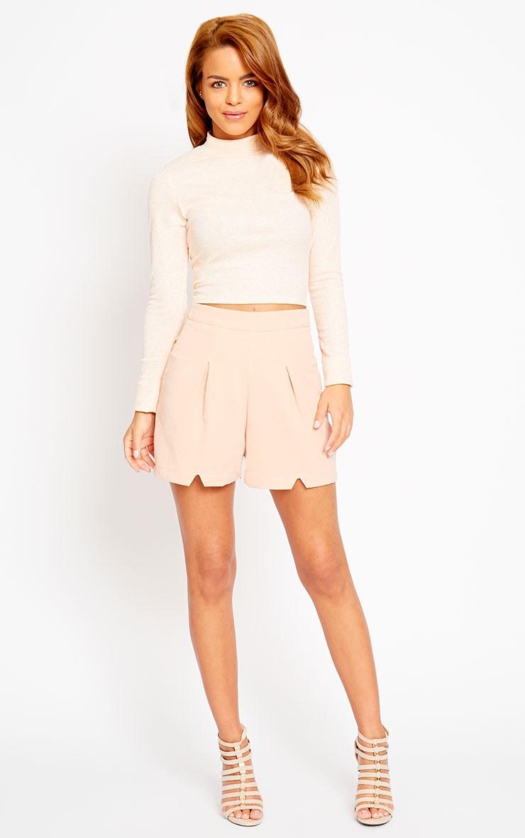 Raissa Nude Notch Front High Waist Shorts 5