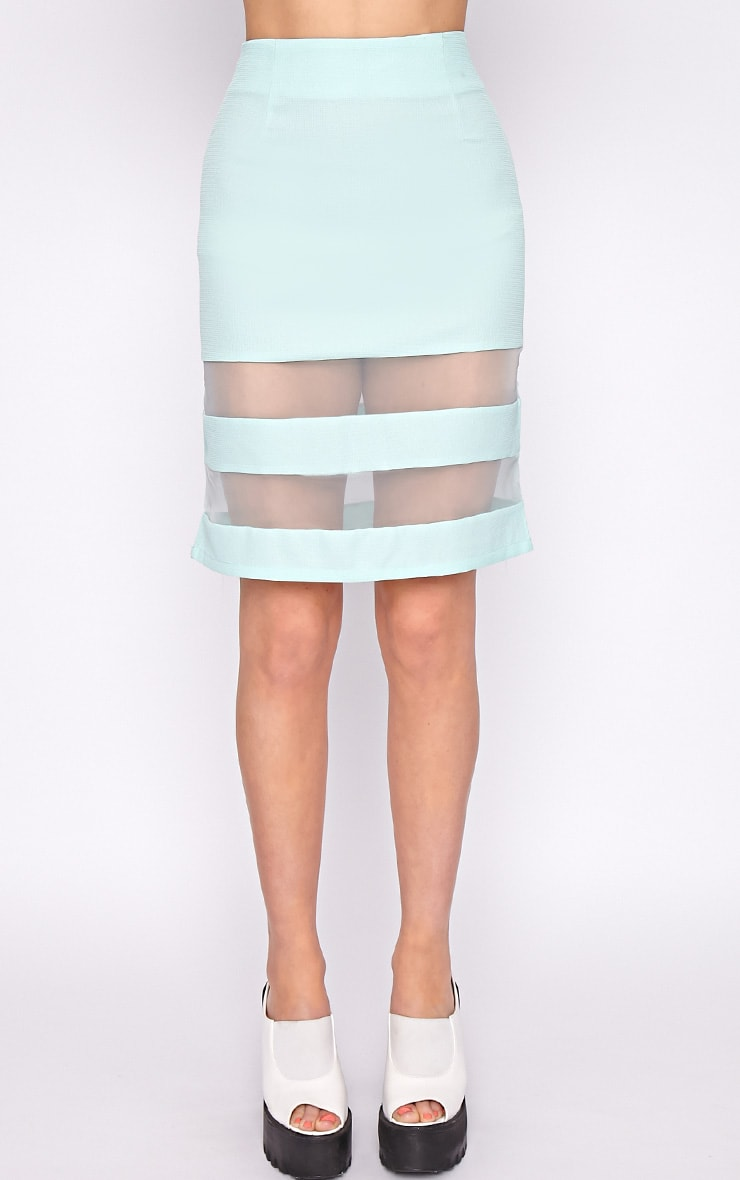 Dakota Mint Mesh Insert Skirt  5