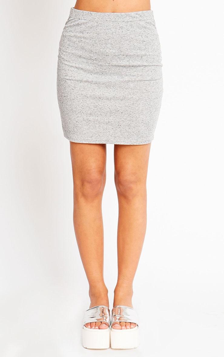 Honey Grey Ribbed Mini Skirt 2