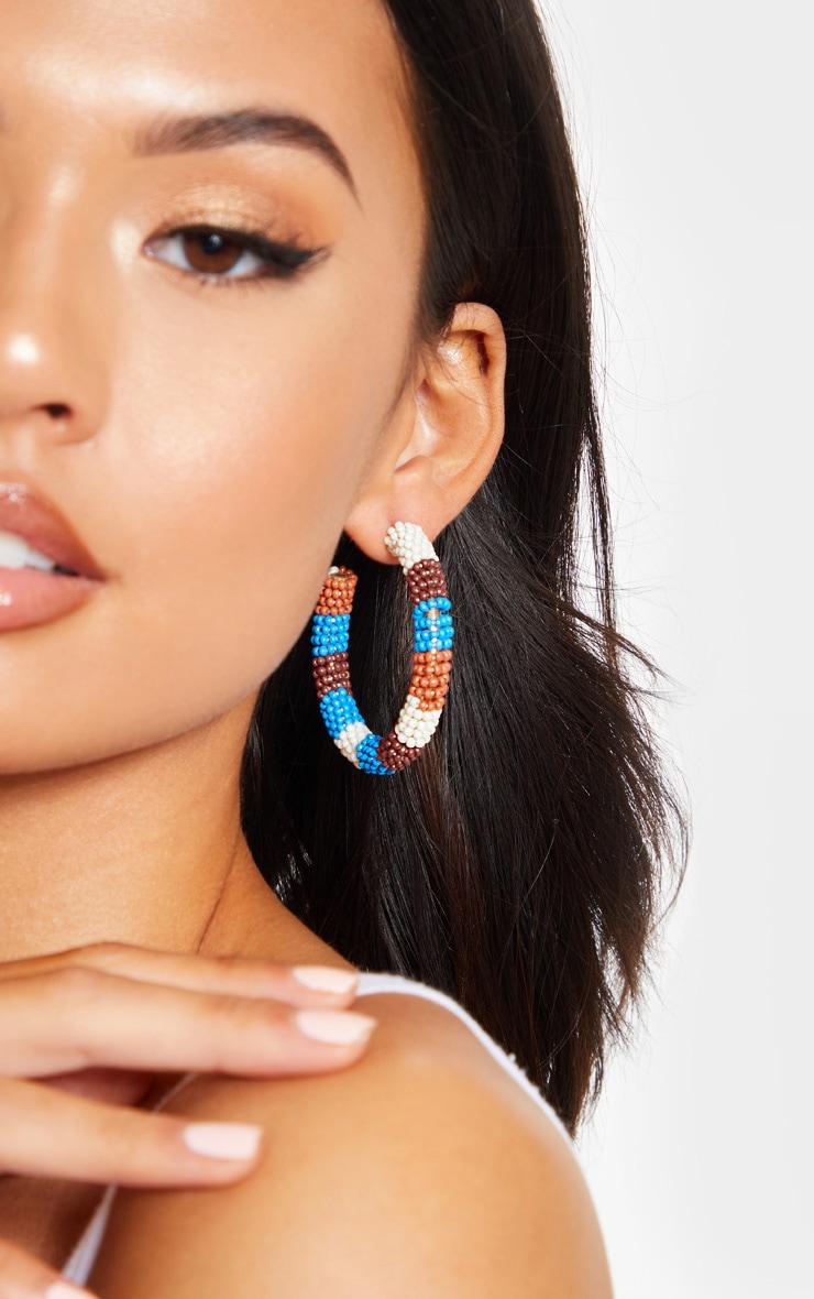 Multi Beaded Hoop Earrings 1
