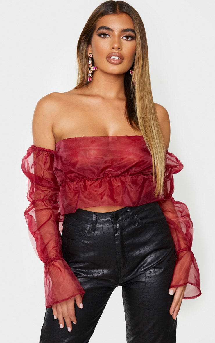 Burgundy Sheer Bardot Ruched Tiered Sleeve Crop Top 1