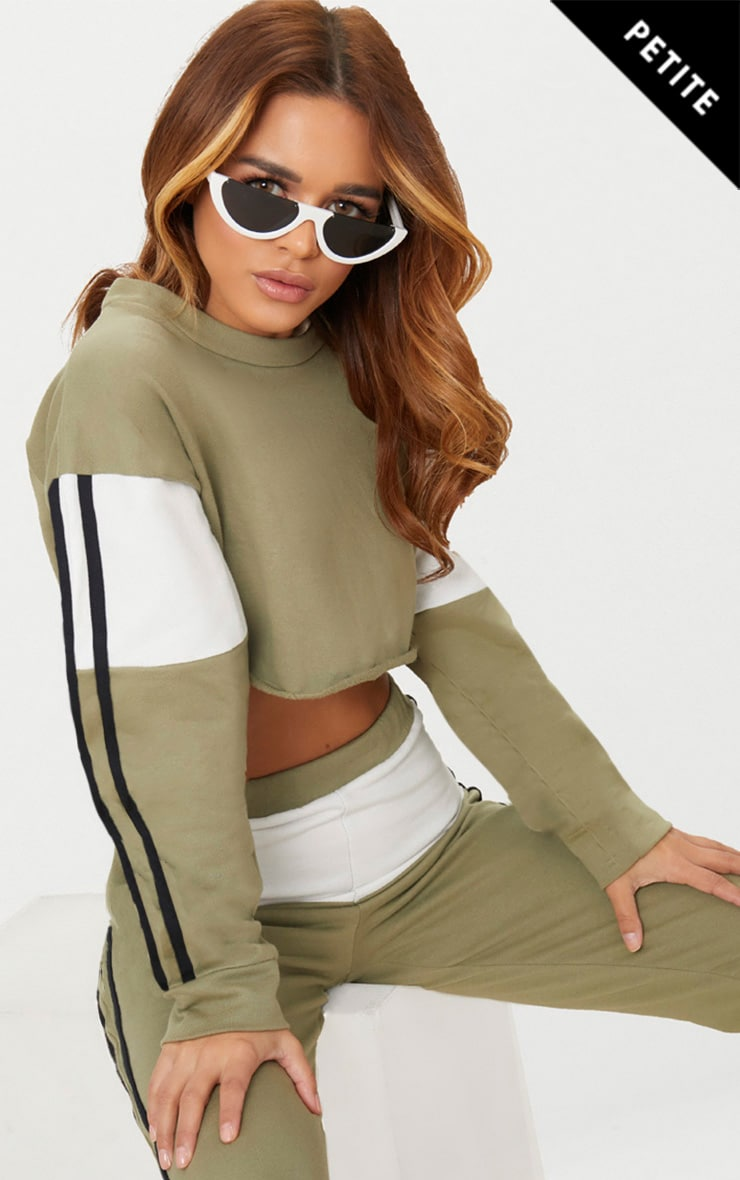 Petite Sage Green Contrast Cropped Sweater  1