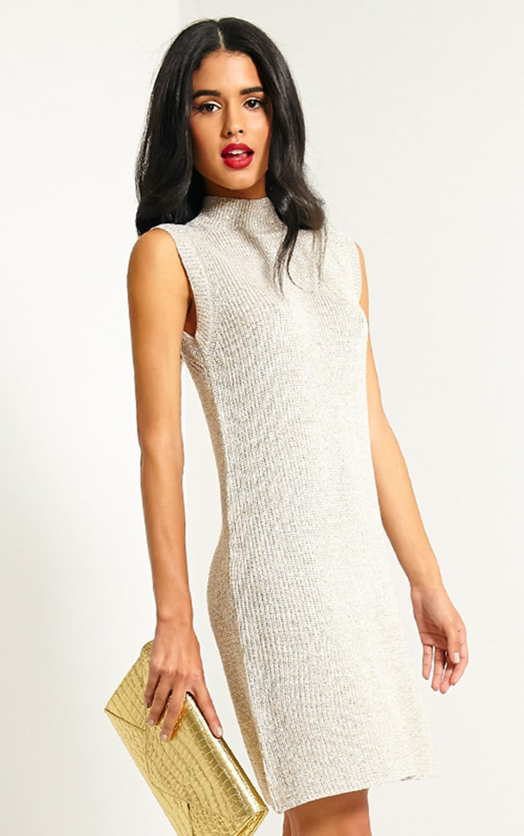 Zedanya Beige Metallic Knitted Dress 1
