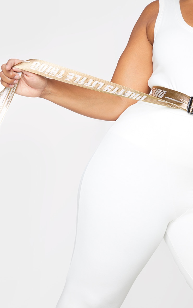 PRETTYLITTLETHING Plus Stone Reversible Taping Belt 2