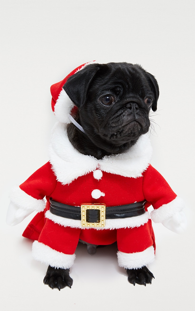 Red Santa Doggy Costume and Hat image 1