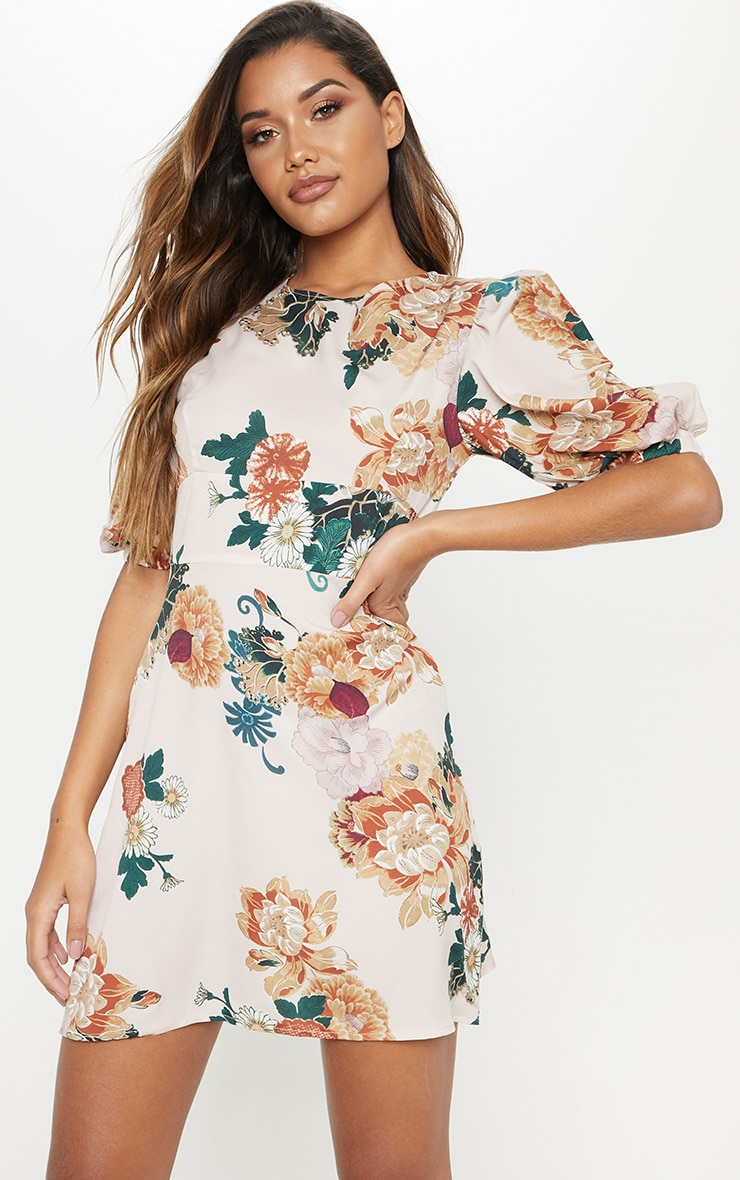 Nude Floral Puff Sleeve Skater Dress 4