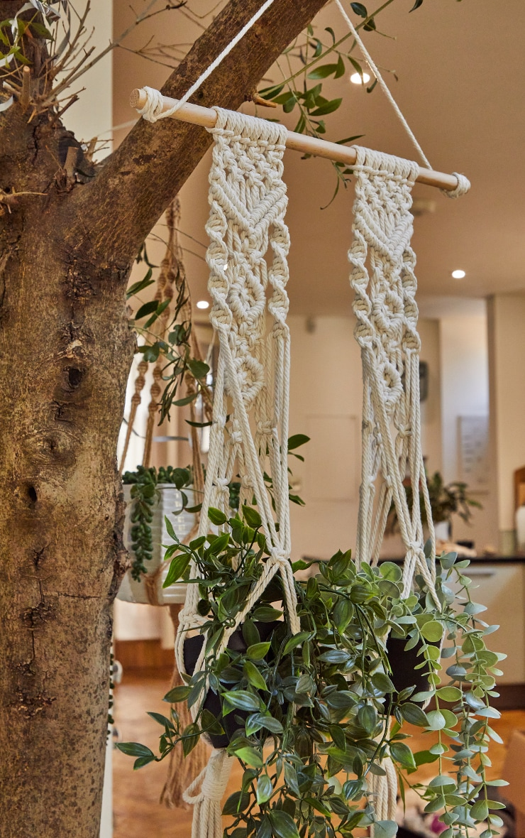 Boho Woven Hanging Plant Tapestry 2