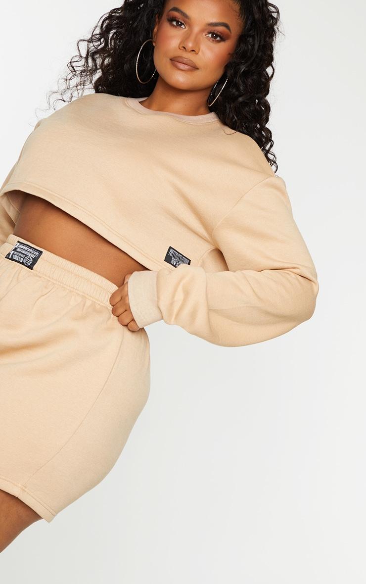 Plus Stone PLT Badge Cropped Sweater 4