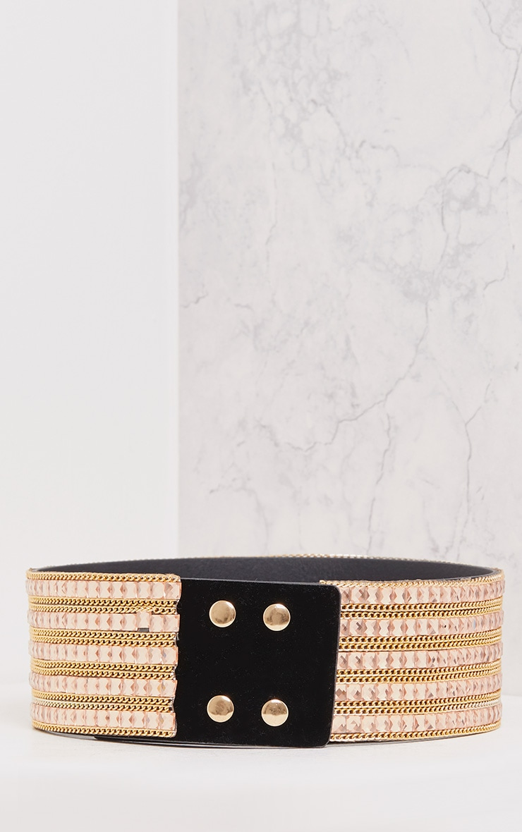 Carmel Rose & Gold Chain Waist Belt 5