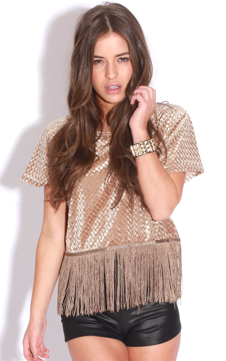 Bianca Gold Tassel Velvet Crop Top 1