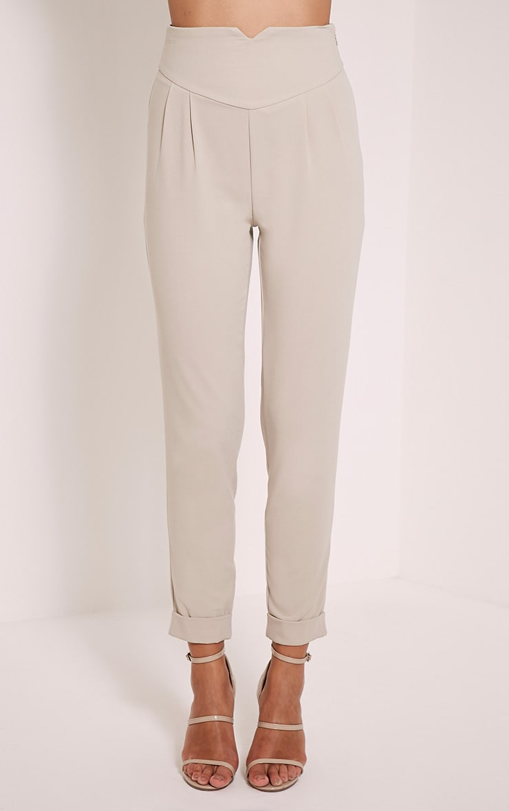 Elenor Stone High Waisted Tapered Trousers 2