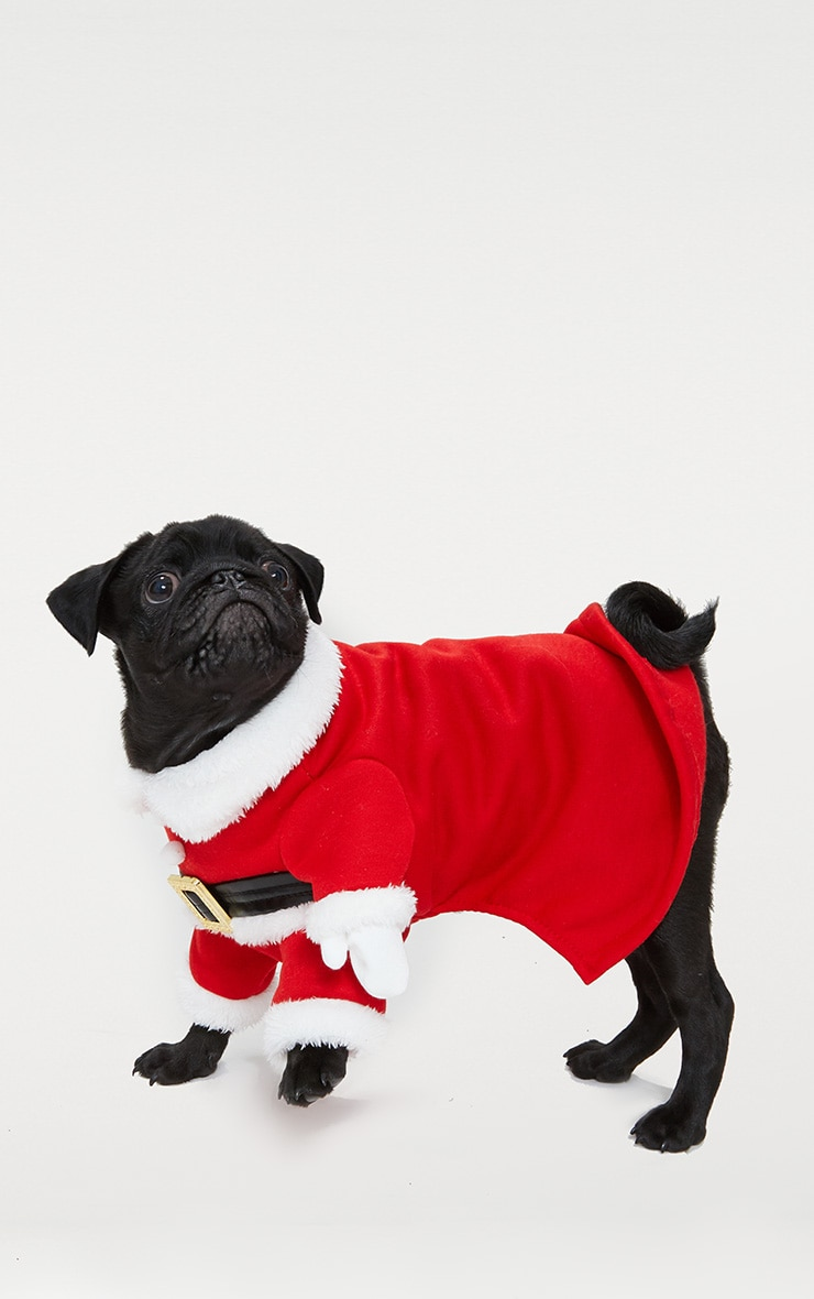 Red Santa Doggy Costume and Hat 2